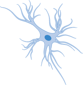 Glial cells by webs health